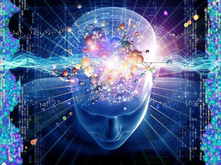 Memory Development